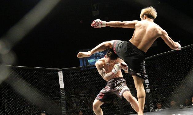 À la découverte d'un sport: le MMA