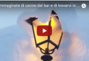 """…Immaginate di uscire dal bar e di trovarvi in trincea!…"" un Val Cenese descrive 2 metri di neve."