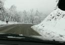 BARDI neve del 22 febbraio. Incidente lungo la SP28 un giovane finisce fuori strada con il suo mezzo.