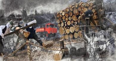 """Un ritorno alla legna da riscaldamento oggi e 70 anni fa quando quel """"camion rosso"""" di Ubaldo Bertoli ha fatto rialzare i prezzi"""