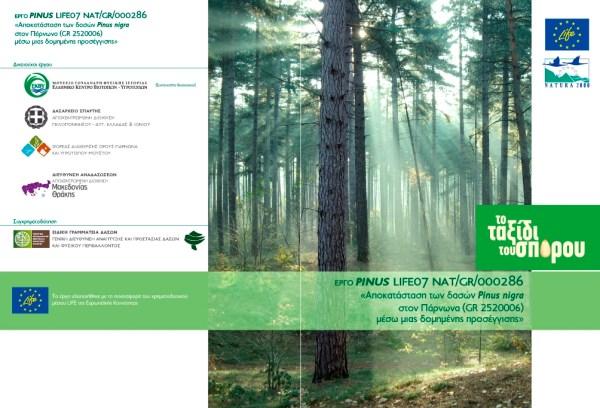 dvd-cover_GR.jpg