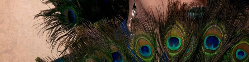 Quando l'arte si fa nobile: intervista al Conte Giulio Maccavino