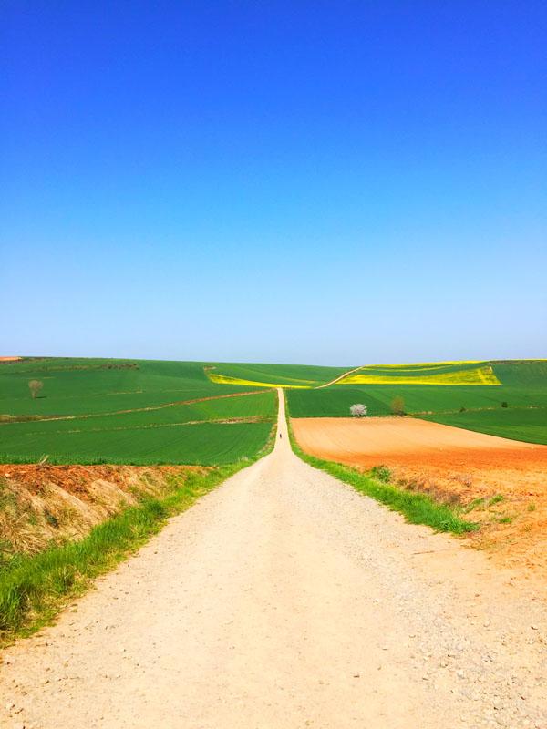 Cammino di Santiago - La Rioja