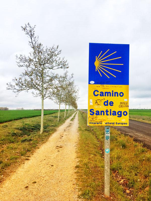 Cammino di Santiago - Le Mesetas