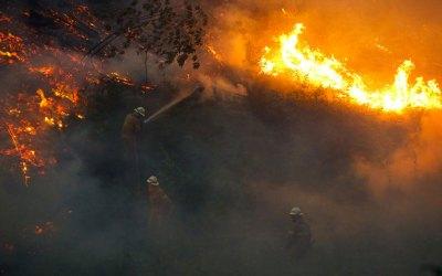 Solidários com asvítimas dos incêndios