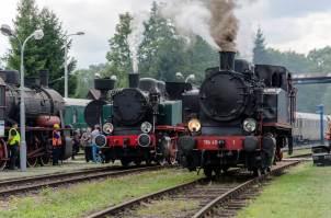 TKh49-1 (Chabówka) i TKh05353 (KSK Wrocław) podczas Parowozjady'2015. Fot.: Patryk Farana.