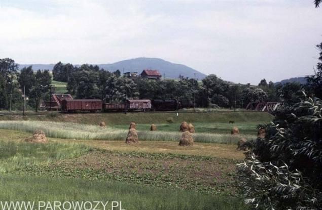 Stacja w Chabówce; Ty2 i pociąg towarowy z kierunku Zakopanego. 12:30; 12.VII.1987. Fot. Roelof Hamoen.