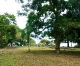 Banahaw Park