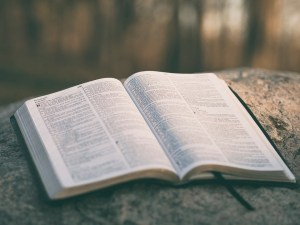 Esercizi spirituali vicariali