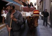 Corpus.Murcia.2016.15