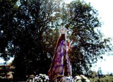 Bajada Virgen de la Fuensanta.9-3-2017.042