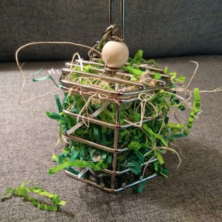 the best foraging toys for birds