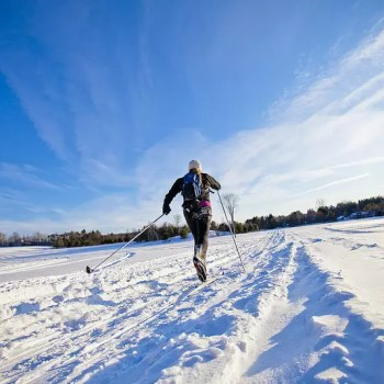 Cross Country Skiing in Parry Sound