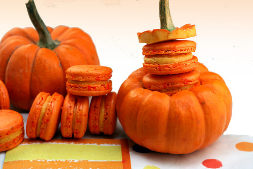 Pumpkin Cheese macarons. Have you tackled the macaron yet? If not, these pumpkin cheese macarons may change your mind!