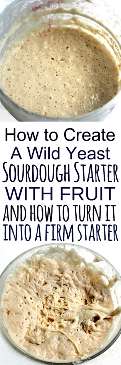 How to create a sourdough starter by capturing wild yeast from the air via fruit, and how to turn part of that starter into a firm sourdough starter for bread recipes that call for it. This sourdough starter will be your new pet because it's alive! #sourdoughstarter #sourdough #bread #firmsourdoughstarter #battersourdough