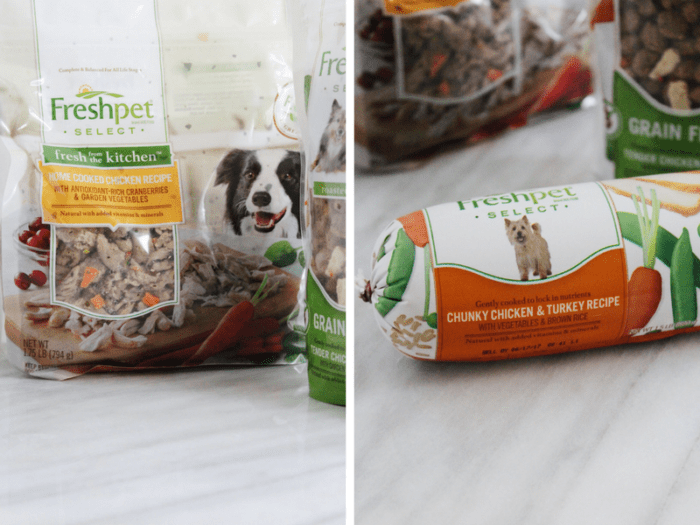 healthy foods you can share with your dog