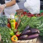mercato_del_contadino