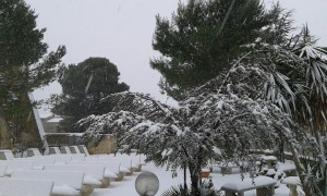 Neve a Partanna-Gaspare_Nastasi3