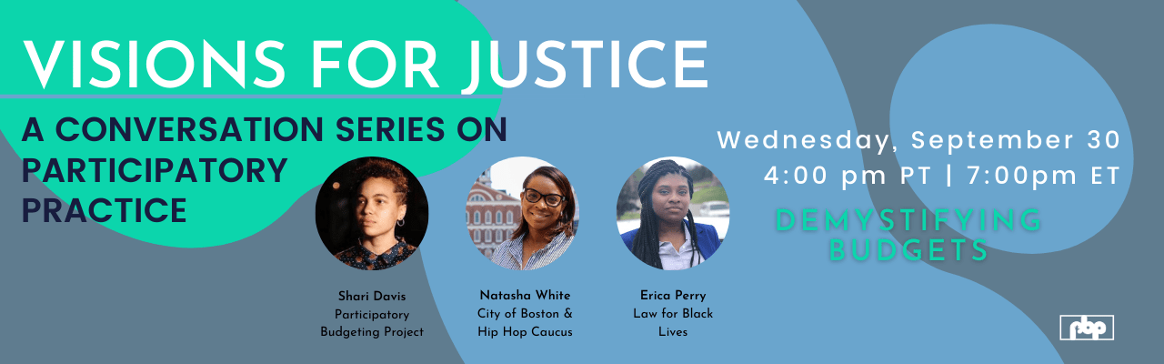 Visions for Justice: A Conversation Series on Paritcipatory Practice - Demystifying Budgets