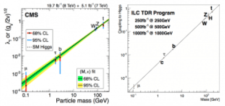 Higgs to fermion couplings, from CMS experiment (left) and projected for ILC (right).