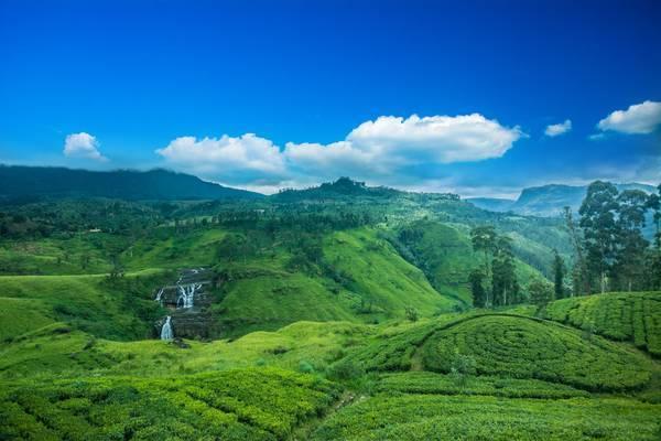 Partir En Voyage Au Sri Lanka Guide Complet Et Secrets De
