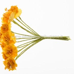 Begonia piccola - Giallo oro (72 pezzi)-0