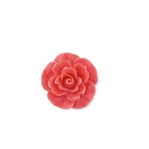 Rosa Corallo (24 pezzi)-0