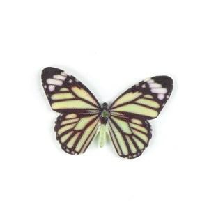 farfalla decorativa verde