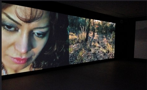 Parya Vatankhah, Metamorphose, video-installation, Malmo center