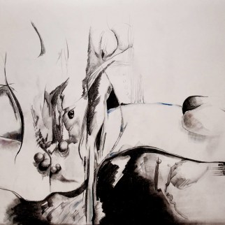 Pencil and graphite on paper 50 x 70 cm