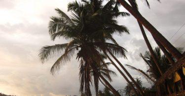 mejor época del año para viajar a Sri Lanka