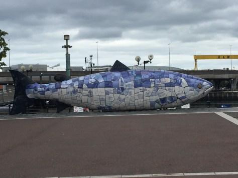 Big Fish Belfast