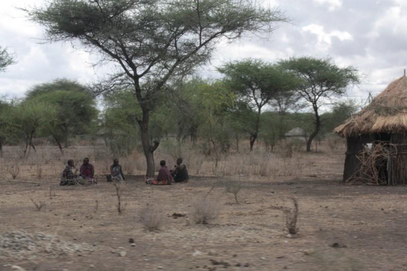 Masais Taranguire