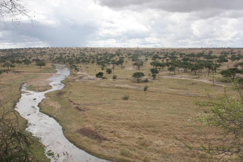 Rio Taranguire