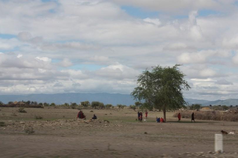 Camino a Ngorongoro