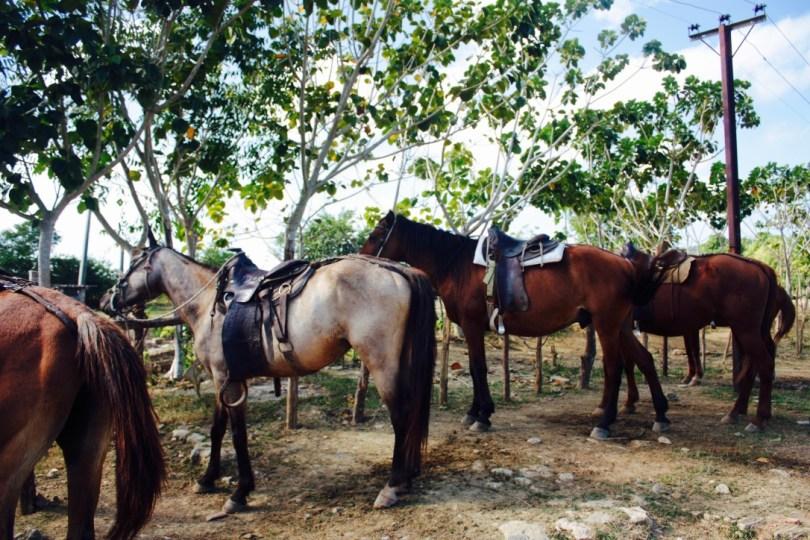 Parque Natural El Cubano