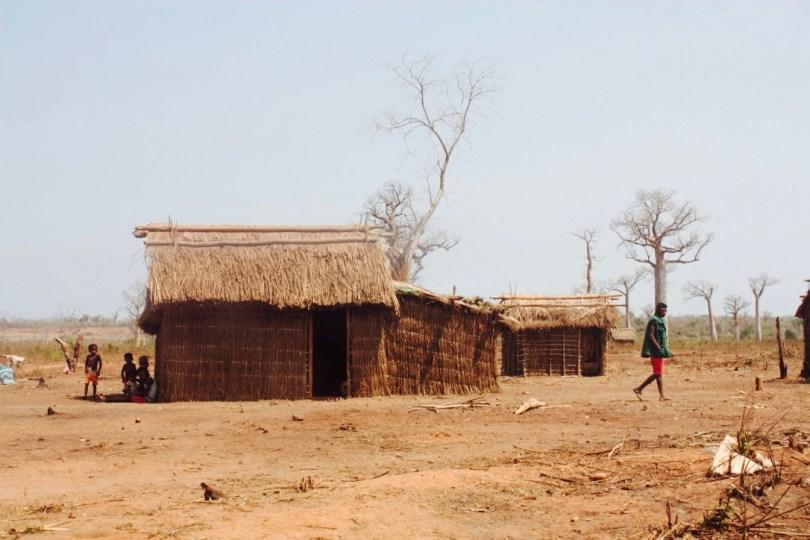 Madagascar deforestación