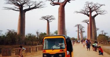 Qué ver en Madagascar