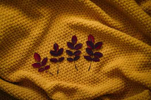 four brown leaves on textile