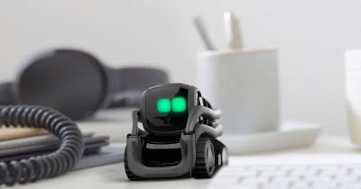 Anki Vector robot curieux