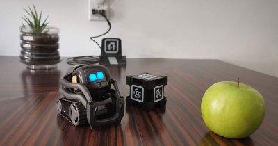 Vector robot domestique curieux Alexa