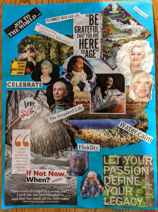 Collage - Positive Images of Ageing from a sage in training