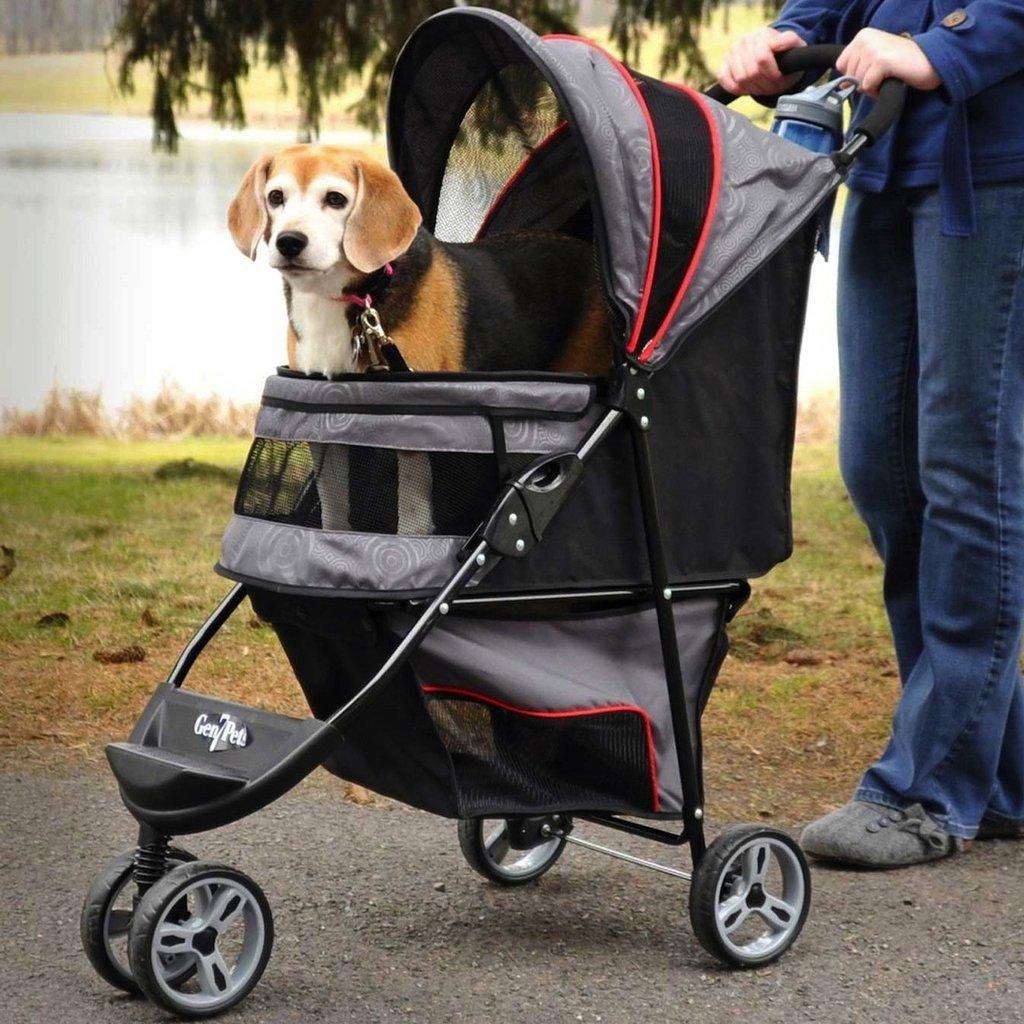 5 casi in cui hai bisogno di un passeggino per cani
