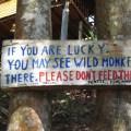 Heed the warnings on Koh Jum