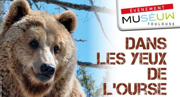 Vidéo : une journée dans la peau d'un ours