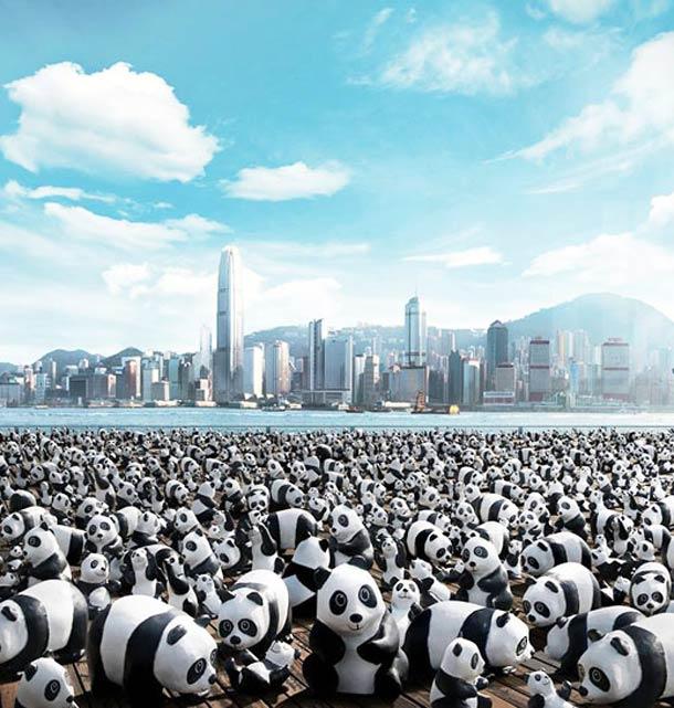 1600-Panda