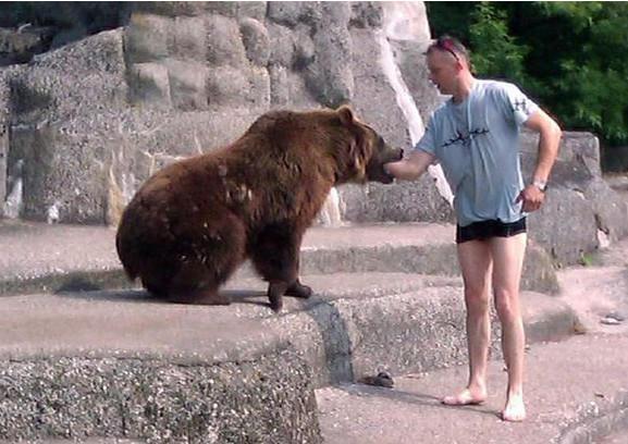 L'ours a pris le bras de l'intrus dans sa gueule.