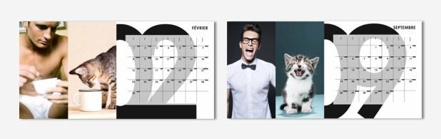 """""""Des hommes & des chatons"""" 2016, le calendrier aussi sexy que mignon"""