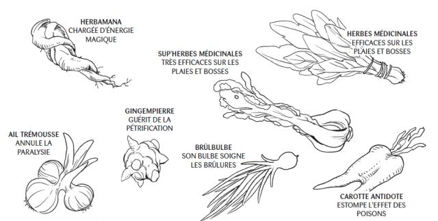Gloutons & Dragons - plantes médicinales