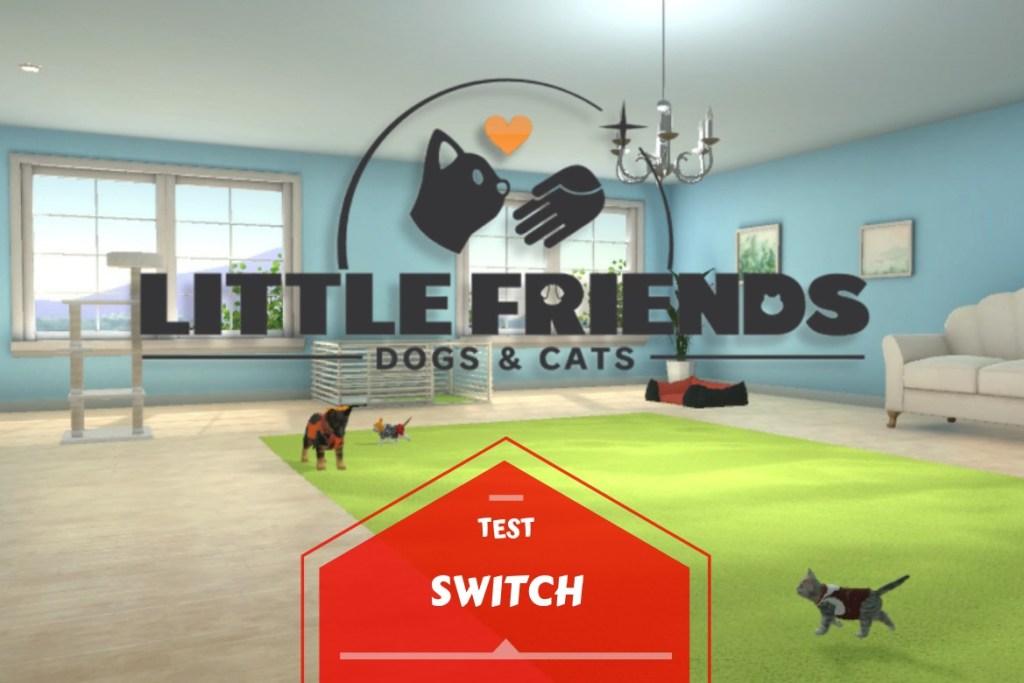 Bannière test Little Friends Switch